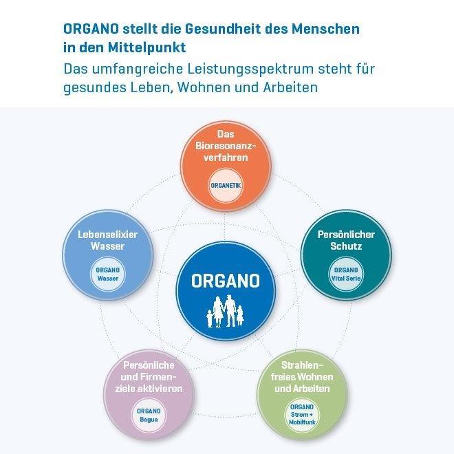 Organo Kreislauf